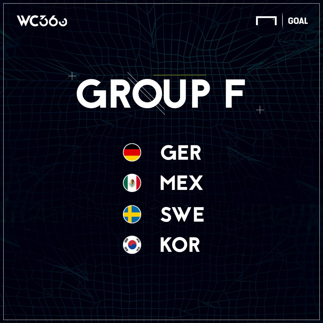 ロシアW杯グループF