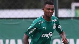 Luan Cândido Palmeiras 2019
