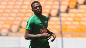 Bafana Bafana, Motjeka Madisha
