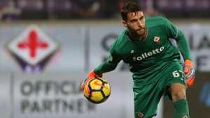 Sportiello - Fiorentina