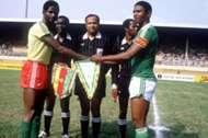 أمم أفريقيا 1984