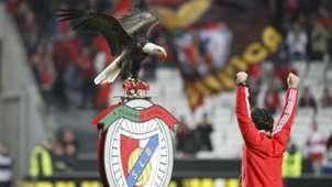 Benfica Eagle