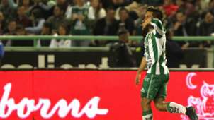 Fernando Navarro Leon