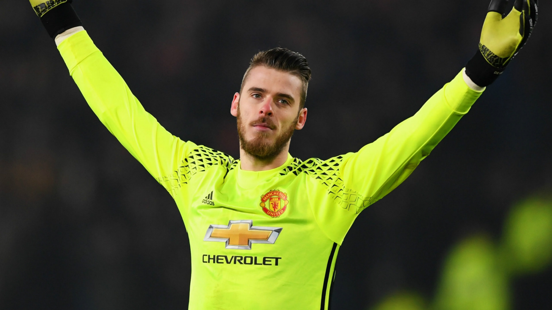HD David de Gea Manchester United