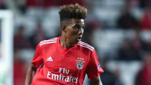 Gedson Fernandes Benfica