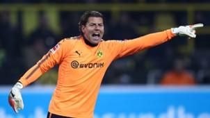 Borussia Dortmund Schalke 04 20171125 Weidenfeller