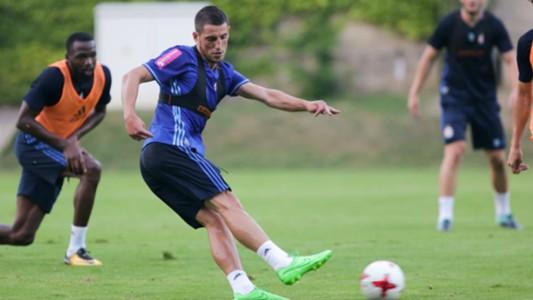 Arijan Ademi Dinamo