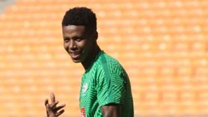 Bafana Bafana, Bongani Zungu