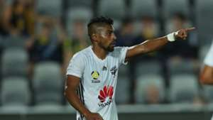 Roy Krishna Wellington Phoenix