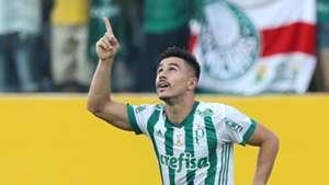 Willian Bigode Atletico-GO Palmeiras Brasileirao Serie A 15102017