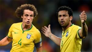 GFX Fred David Luiz Brazil