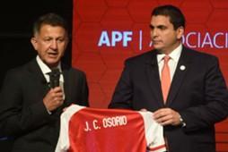 Osorio APF3