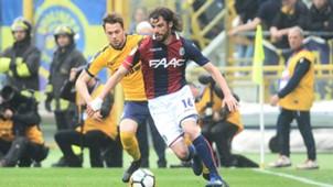 Andrea Poli Bologna Verona Serie A