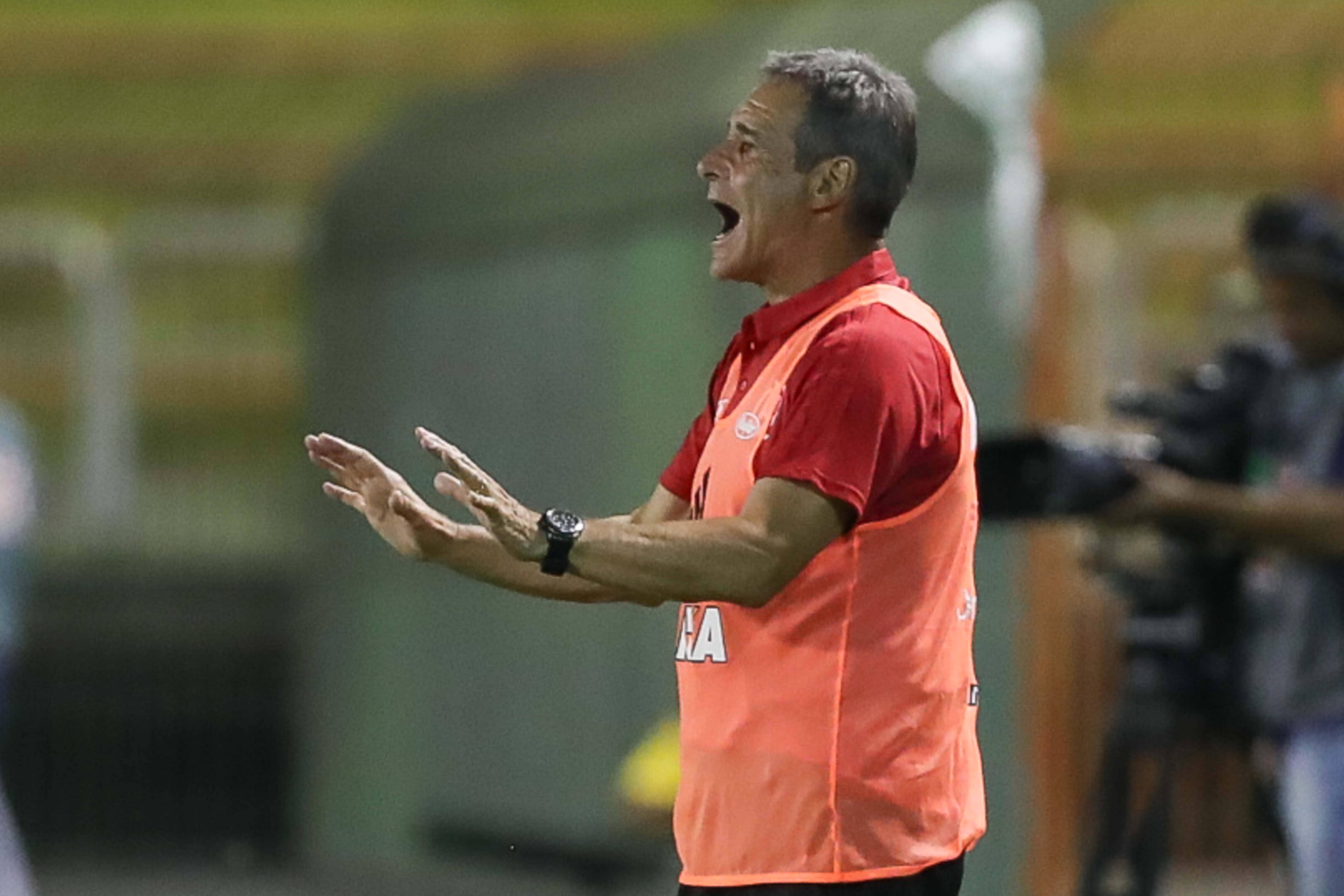 Paulo Cesar Carpegiani Flamengo