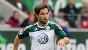 Diego Ribas, Werder Bremen