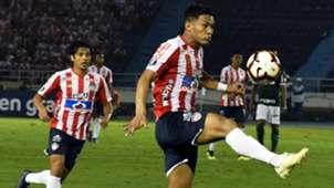 Matías Fernández Teo Gutiérrez Junior Palmeiras Copa Libertadores 2019