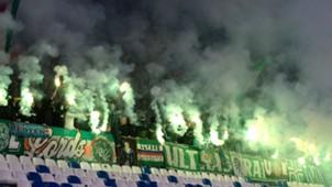 Rapid Wien Fans