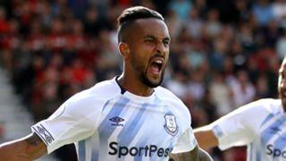Theo Walcott Everton 2018-19
