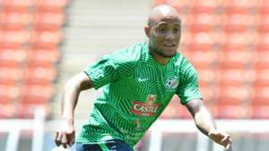 Bafana Bafana, Dino Ndlovu