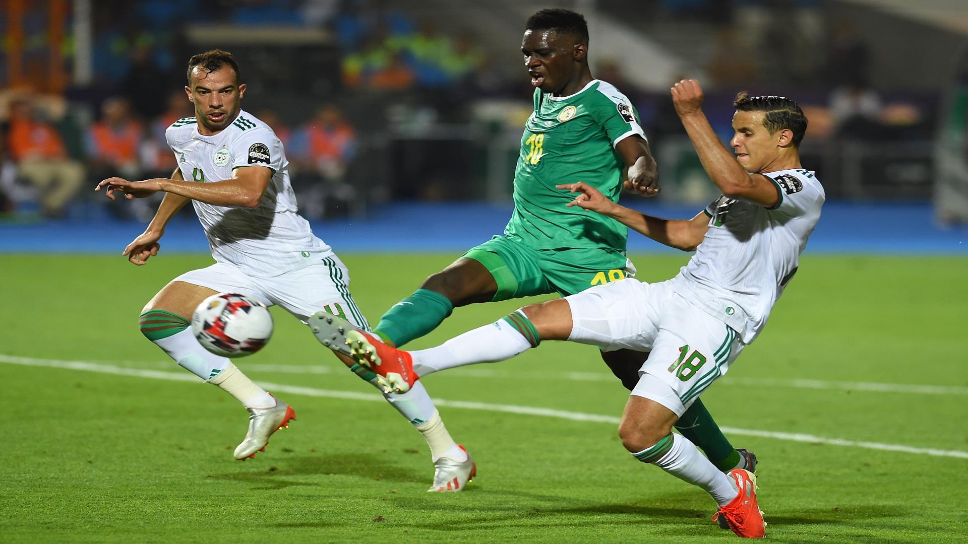 مهدي زفان الجزائر - السنغال