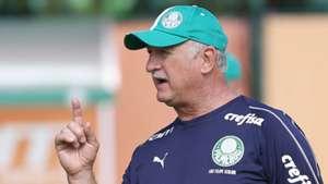 Felipão Scolari treino Palmeiras 08012019