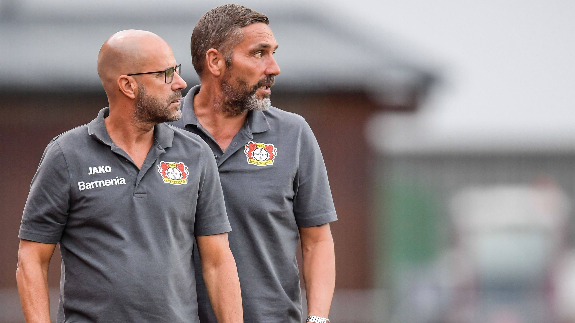 ONLY GERMANY Peter Bosz Hendrie Krüzen Leverkusen 2019