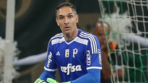 Fernando Prass Palmeiras Internacional Copa do Brasil 17052017
