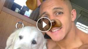 video Alexis Sanchez perro