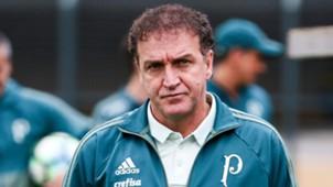 Cuca Palmeiras 01072017