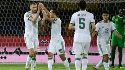 Islam Slimani celebrates with Algeria teammates