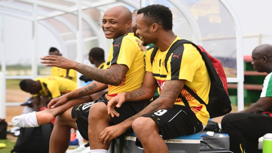 Former sports minister Vanderpuye advises Appiah to recall Ayew brothers