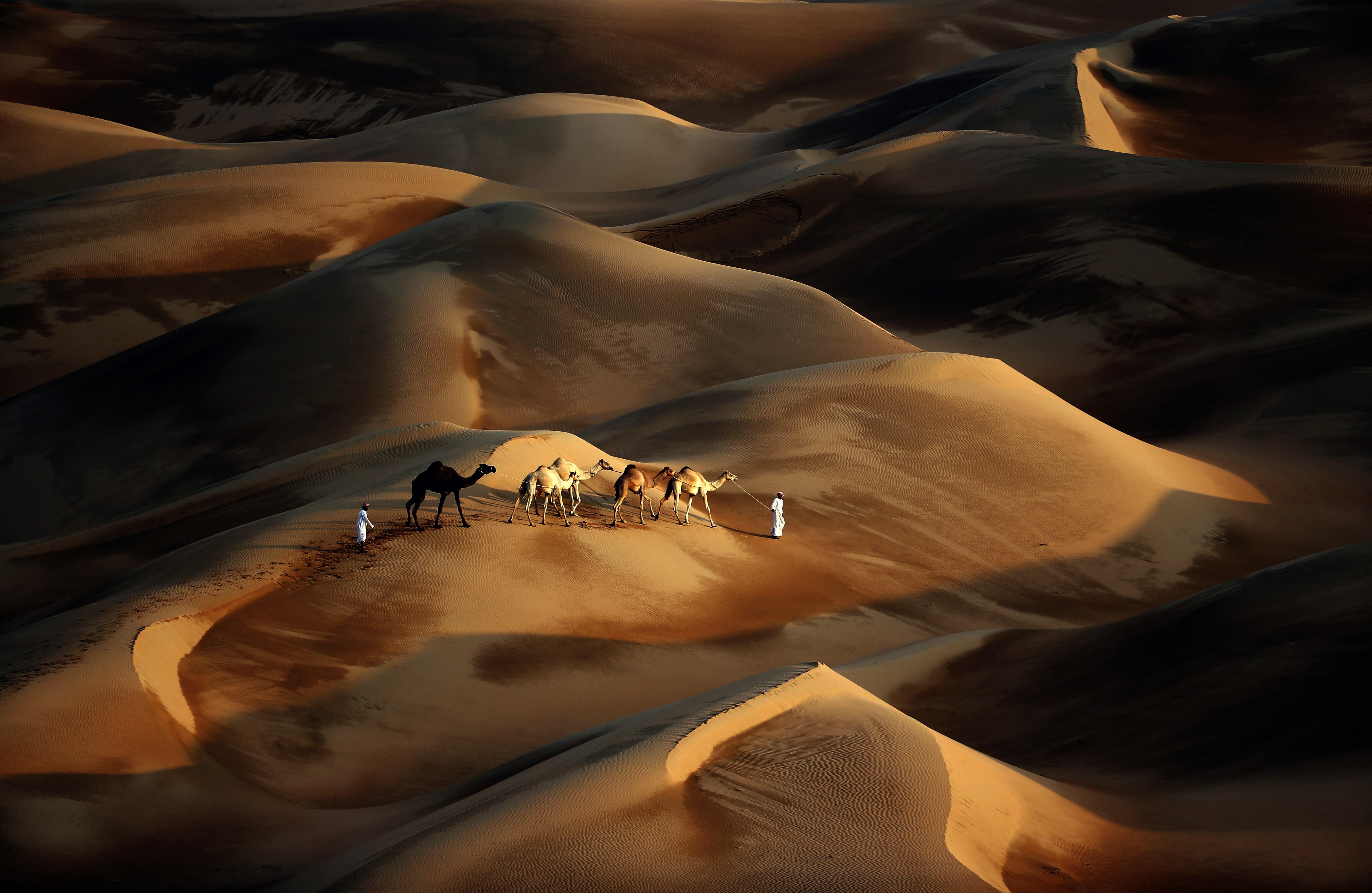 صحراء الإمارات