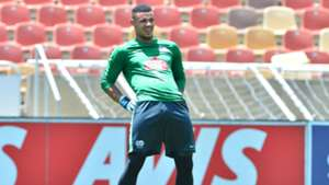 Bafana Bafana, Ronwen Williams