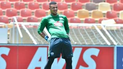 Bafana Bafana, Ronwen Williams