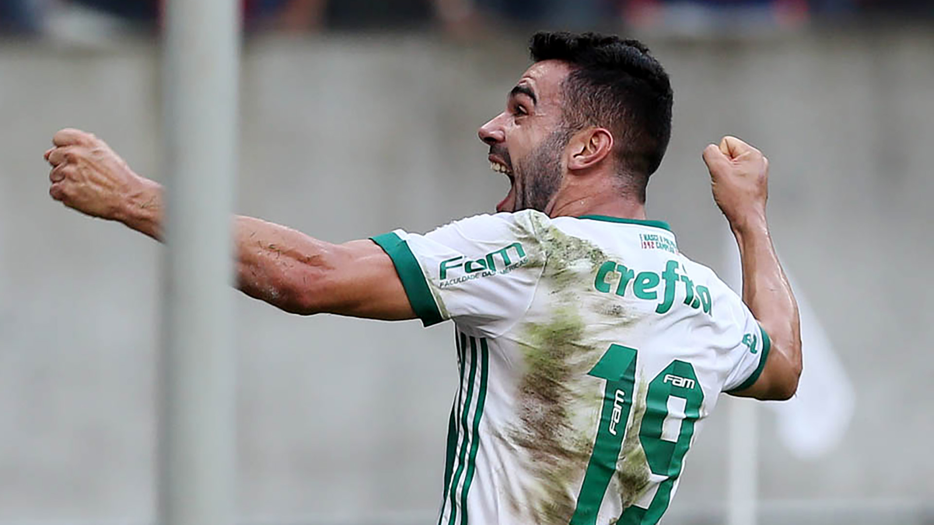 Bruno Henrique Sport Recife Palmeiras Brasileirao Serie A 23072017
