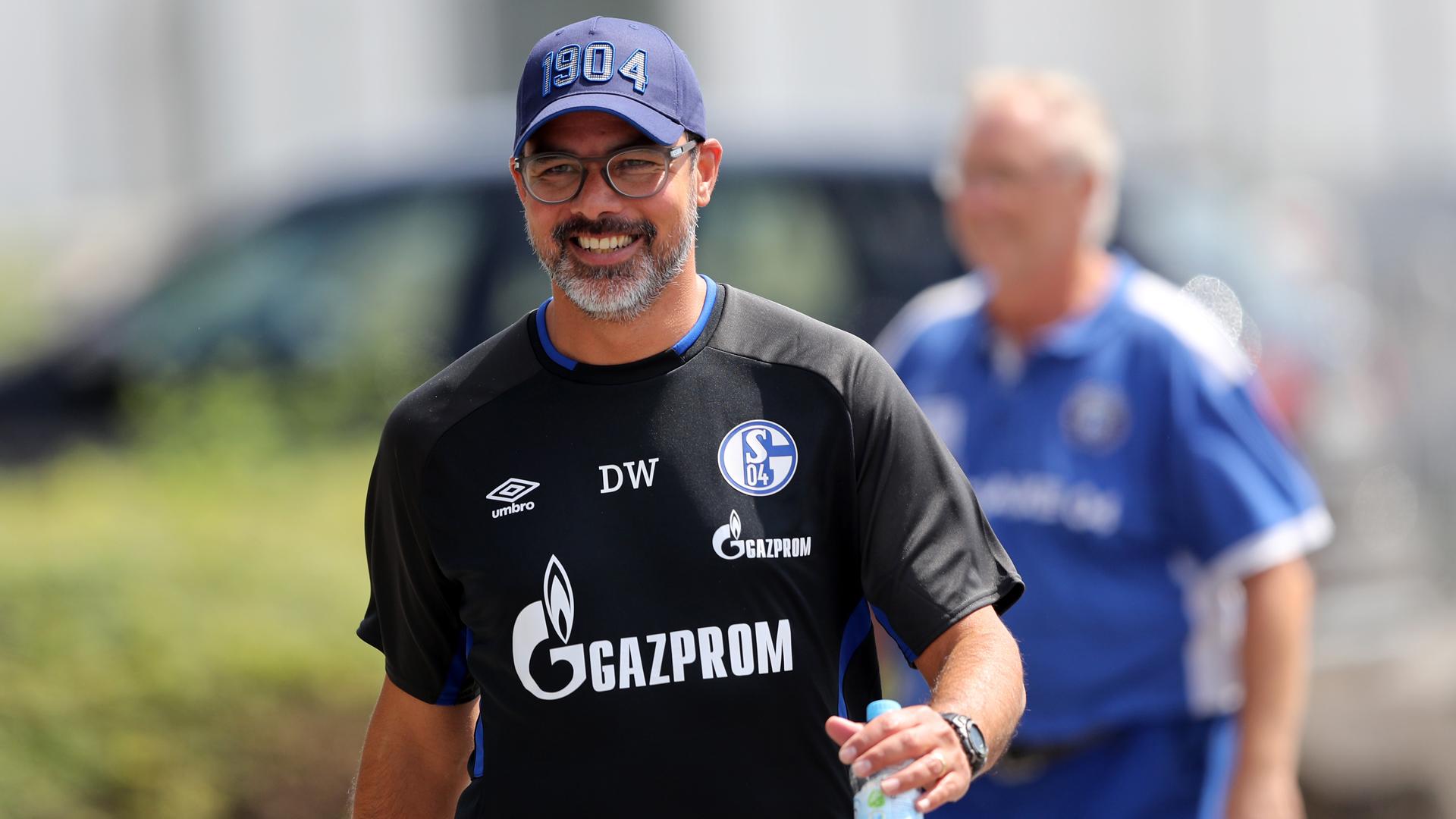 David Wagner FC Schalke 04 Bundesliga