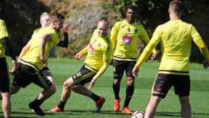 Wellington Phoenix A-League 24012017