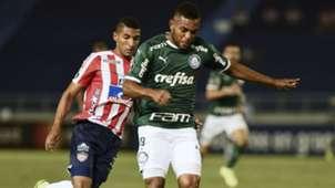 Miguel Borja Gabriel Fuentes Junior Palmeiras Copa Libertadores 06032019