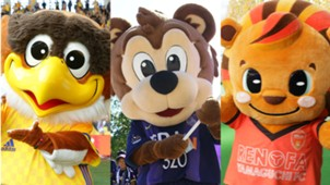 2018-02-07-mascot.jpg