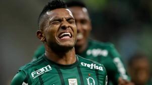 Miguel Borja Palmeiras Atletico-GO Brasileirao Serie A 21062017