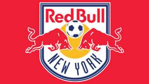 GFX New York Red Bulls logo Panel