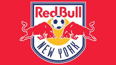 GFX New York Red Bulls logo Panel