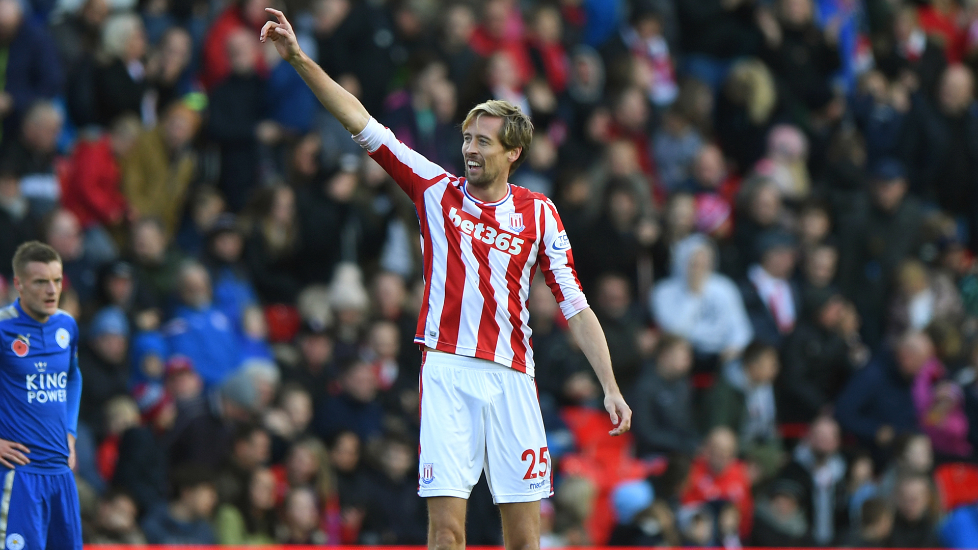 Peter Crouch Stoke Leicester Premier League 11042017