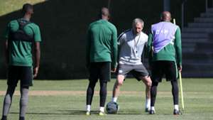 Stuart Baxter South Africa coach Afcon preparation June 18