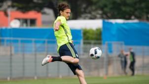 Albin Ekdal Sweden Euro 2016