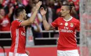 Ljubomir Fejsa, Benfica