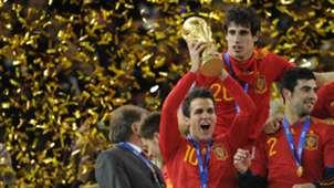Cesc Fabregas Spain 2010