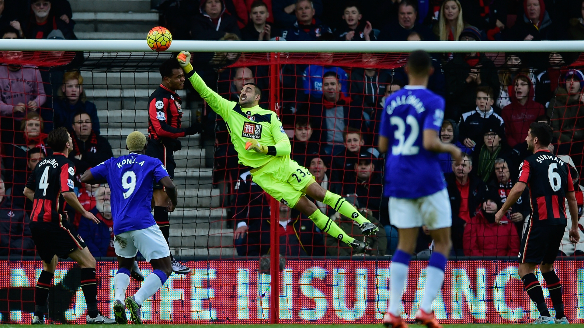 Adam Federici Bournemouth v Everton Premier League 28112015