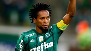 Ze Roberto Palmeiras Botafogo Brasileirao Serie A 27112017