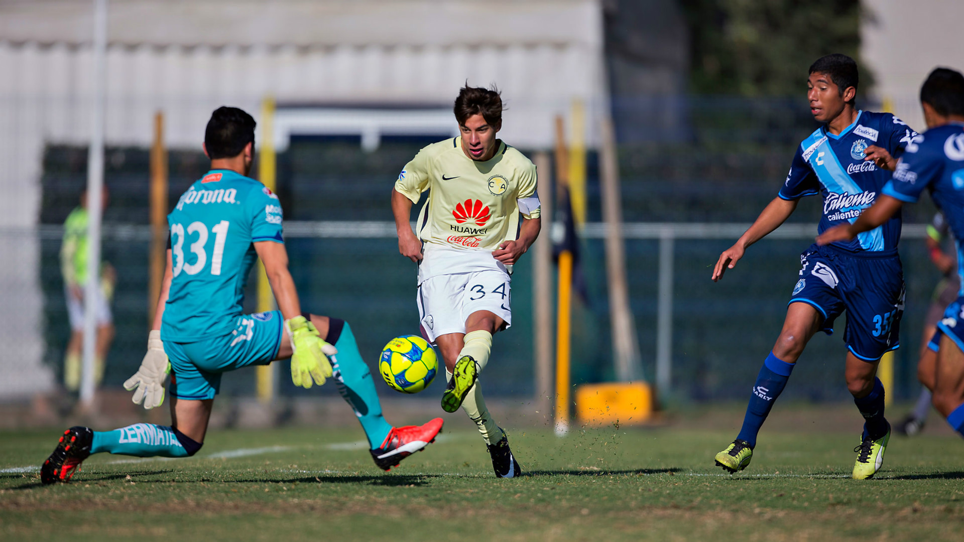 Diego Lainez 3